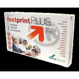 Fostprint Plus 300 Ml